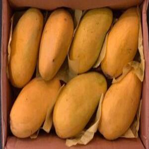 mango-pakistan-2-kg-300×188